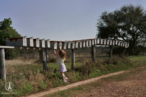 Olivia Gets the Mail in Dripping Springs, Texas.